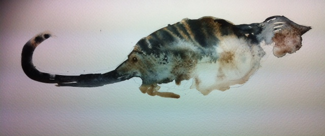 Tabby cat at Art in the Park class