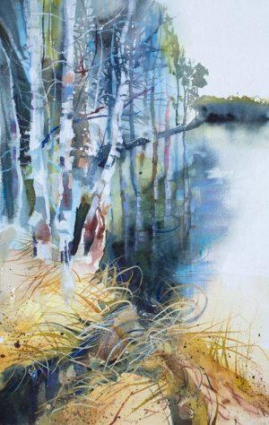 Silver Birch, Uath Lochans. Watercolour, 34 x 54 cm