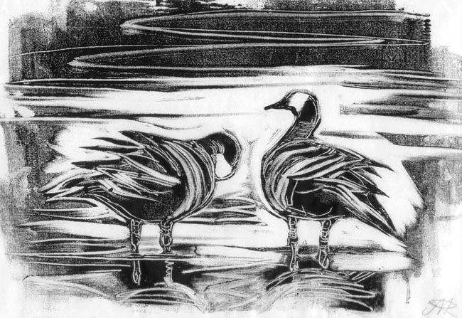 Canada geese. Monotype. 2013