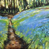 Bluebells, Scorton Woods. Limited edition print.