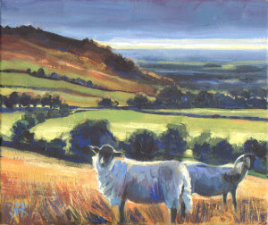 Sheep near Nicky Nook. Limited edition print.