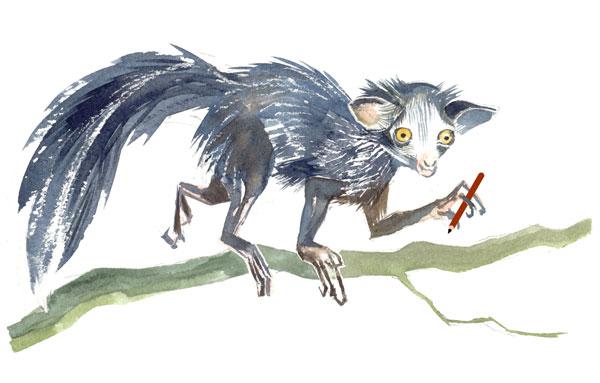 aye-aye lemur holding a pen