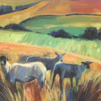 Bowland Sheep. Acrylic