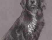 'Drew'. Pastel and charcoal.