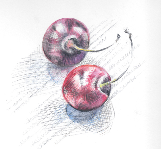Two cherries. Pencil sketch.