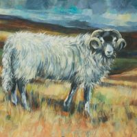 'The Fleece Swaledale'