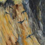 Sand-Martins,-River-Lune,-JM-Robinson